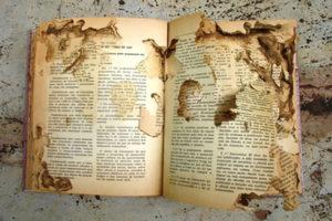 Como proteger livros das traças?