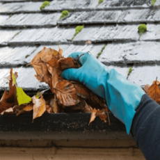 Saiba os problemas comuns em telhados